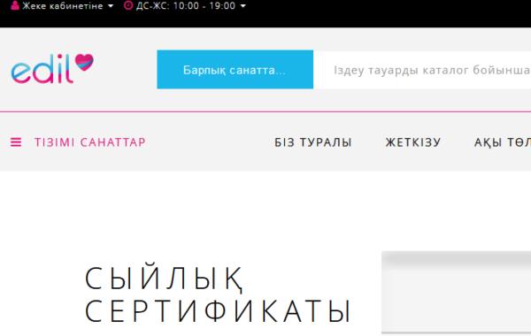 Разработка интернет-магазина для Казахстана
